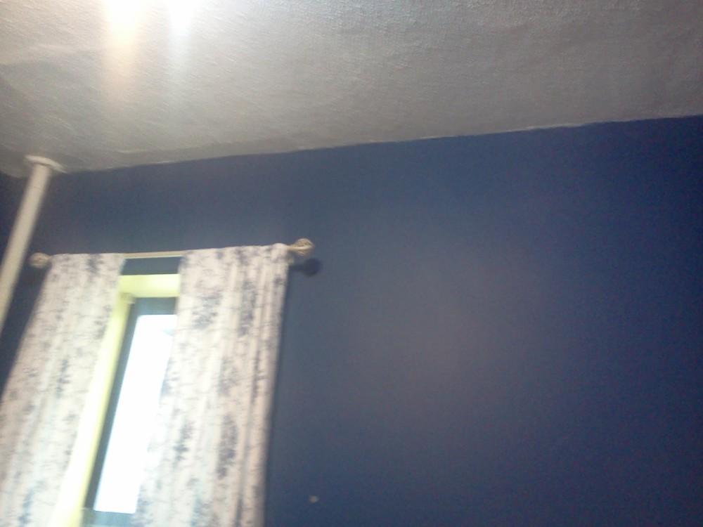 Blue room for rent 10