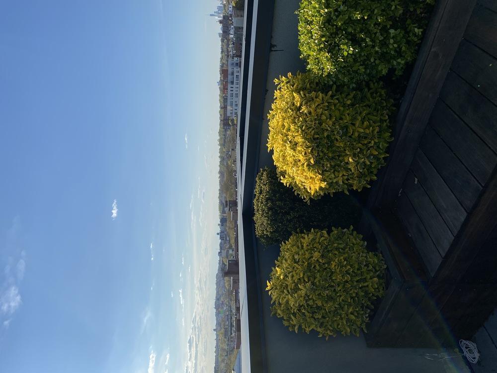 Post roof2